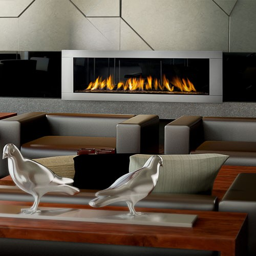 Napoleon Gas Fireplace Vector 62-Natural Gas